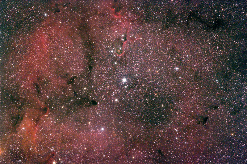 MIGUEL MERINO - Astrophotography Gallery: IC 1396 The ...